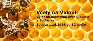 160611_Vcely_na_Vidouli