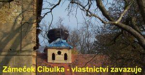 Cibulka-vez2