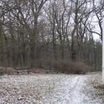 Prostranství s lavičkami pro hřiště (U lesíka)
